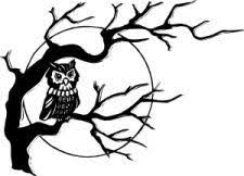 tree symbol meaning owl symbol