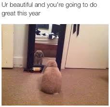 You Re Beautiful Meme - ur beautiful and you re going to do great this year bunny