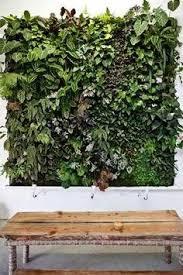 Ebay Vertical Garden - artificial vertical garden green wall green walls gardens and
