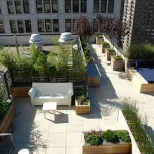 decorating contemporary roof area with large outdoor planter