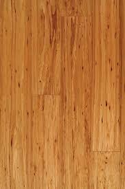 densified eucalyptus chagne tesoro woods