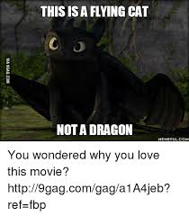 Flying Cat Meme - this is a flying cat nota dragon memeful com you wondered why you