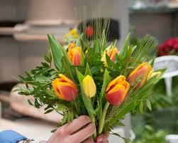 my flowers my flowers cactus