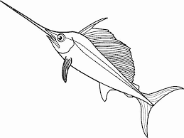 special fish coloring sheet coloring design ga 2014 unknown