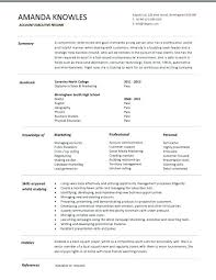 executive resume formats and exles sales executive resume template sales executive resume template