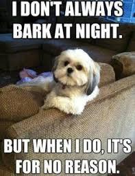 Hipster Dog Meme - hipster dog meme slapcaption com hipsters crack me up