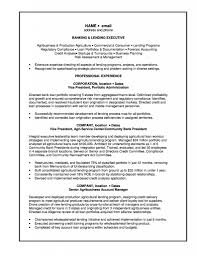 Private Banker Resume Sample Free Resume Example And Writing