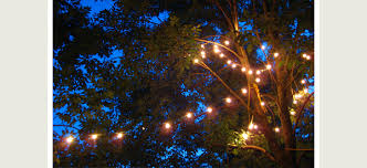 l l look book beautiful uses of outdoor string lights lighting