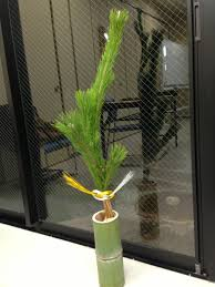 sorte de bambou ikebana for new year ikebana pour le nouvel an murin presents