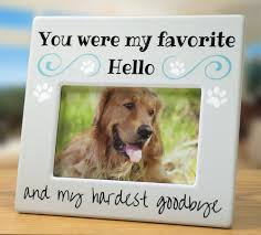 dog memorial pet memorial picture frame bereavement pet memorials and pet