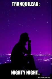 Nighty Night Meme - tranquilean nighty night make a meme