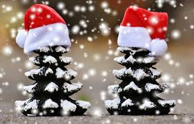 Decoration Christmas Hat by Free Images Snow Winter Cute Contemplation Weather Holiday