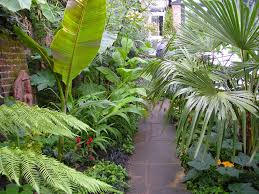 tropical garden plan design planted with various kind of tropical