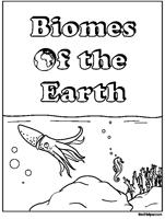animal and biome basics theme unit