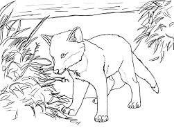 marvellous baby fox coloring pages spring kindergarten animals