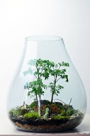 Small Centerpieces 8 Beautiful Terrarium Centerpieces Intimate Weddings Small