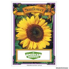 sunflower seed packet american meadows