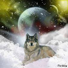 wolf moon january 1 2018 in cancer billie