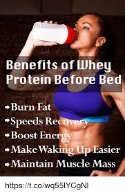 Protein Memes - whey protein meme protein best of the funny meme