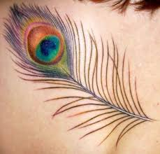50 best ink d uppppp images on peacock feathers