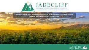 about us jadecliff