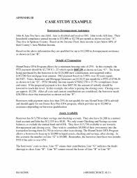 business financial statement excel case business business case