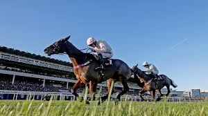 plenty of options for vroum vroum mag after grade one win
