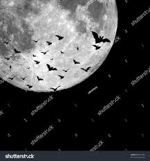 halloween images background bats flying night full moon background stock illustration 80251900