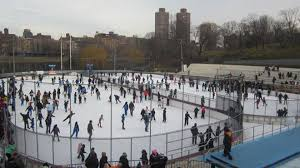 101 Things To Do With In New York 101 Things To Do In New York City In The Winter 2010 Things To