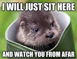 Otter Meme - creepy cute otter memes quickmeme