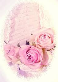 imagenes de rosas vintage romántico rosas vintage rosa imagen gratis en pixabay