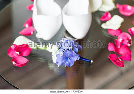 Groom S Boutonniere Corsage And Boutonniere Stock Photos U0026 Corsage And Boutonniere