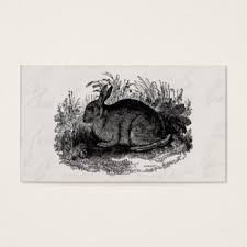 rabbit business cards u0026 templates zazzle