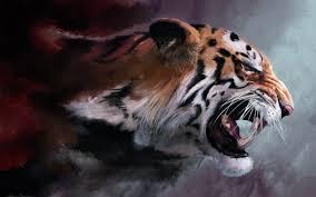 tigers wallpapers 1280 800 60 wallpapers u2013 adorable wallpapers