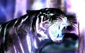 3d tiger wallpaper download