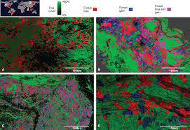 Russian Boreal Forest Disturbance Maps by Seeing The Forest For The Trees Science In The Classroom