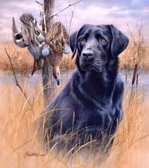 pix for u003e black lab duck hunting painting art oil painting
