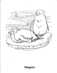 coloring pages of animals and their homes coloring pages ideas