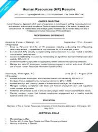 Resume Writing Tips Objective safety professional resume sle human resource resumes resources