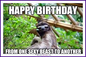Sexy Beast Meme - happy birthday memes with funny cats dogs and cute animals meme