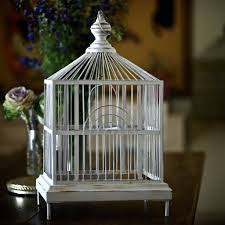 small basement bathroom ideas amazing small bird cages for decorations your with