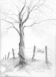 how to draw pencil sketches of trees easy pencil drawings of trees