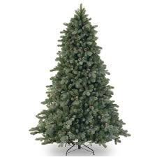 national tree company 7ft frosted colorado spruce feel real