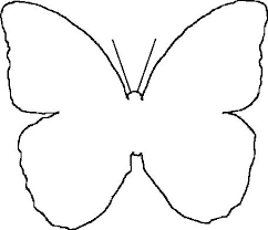 butterfly outline set of butterfly vector image in black and white