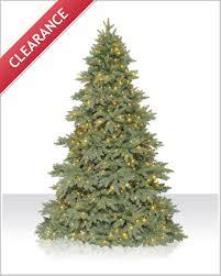 7 5 ft columbia valley fir trees tree market