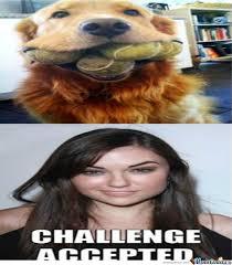 Sasha Grey Meme - sasha grey by skyeboopy meme center