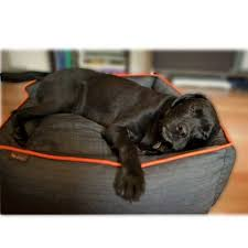 tough dog beds p l a y urban denim dog bed
