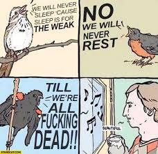 Sleep Is For The Weak Meme - birds singing we will never sleep cause sleep is for the weak no