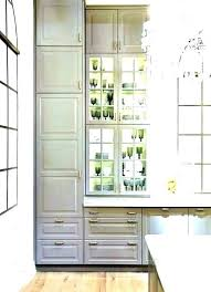 shallow wall cabinets with doors shallow wall cabinets andikan me