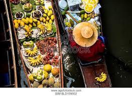 ag e angle cuisine plantain stock photos and images age fotostock